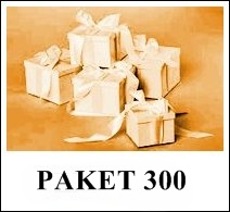 paket300
